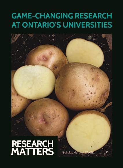 Yukon Gold Potato Playing Card for the Research Matters Game-Changing Research at Ontario Universities campaign